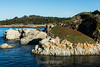China Cove - Point Lobos #0891