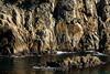 Big Dome - Point Lobos #1454