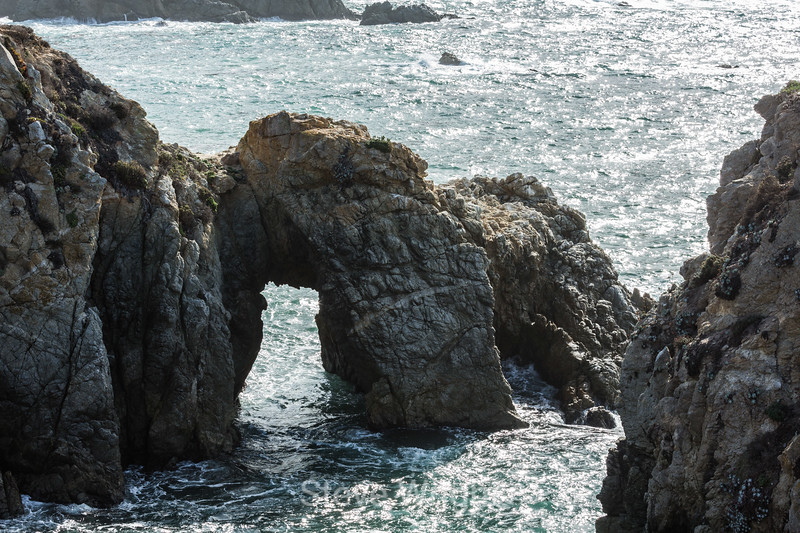 Arch at Gibson Beach Point Lobos #6799