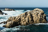 Bird Island - Point Lobos #6821