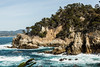 Big Dome - Point Lobos #7165