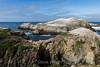 Bird Island - Point Lobos #3367