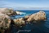 Bird Island - Point Lobos #3371
