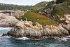 China Cove - Point Lobos #3383