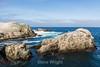 Bird Island - Point Lobos #3375