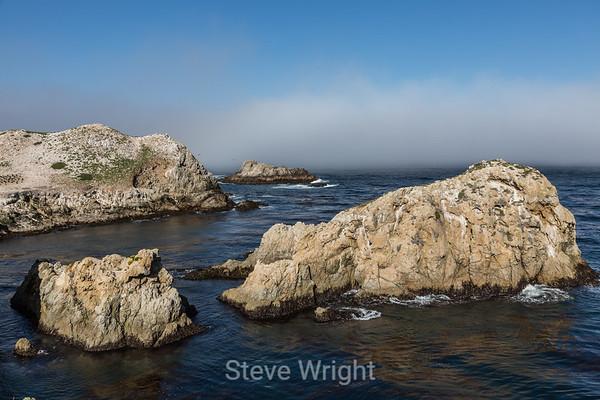 Point Lobos 4-20-2013