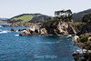 Bluefish Cove, Granite Point & Cannary Point - Point Lobos #7273