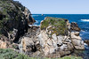 Cannery Point - Point Lobos #7171