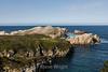 Bird Island - Point Lobos #6698