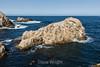 Bird Island - Point Lobos #6778