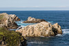 Bird Island - Point Lobos #6696