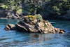 Whaler's Cove - Point Lobos #6892