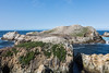 Bird Island - Point Lobos #6773