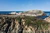 Bird Island - Point Lobos #6723