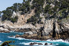 Big Dome - Point Lobos #7417