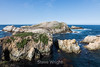 Bird Island - Point Lobos #6776