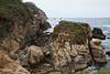 Bluefish Cove - Point Lobos #8242