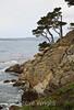 Big Dome Cove - Point Lobos #8270