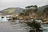 Big Dome Cove - Point Lobos #8276