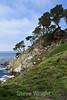Big Dome cove - Point Lobos #9215