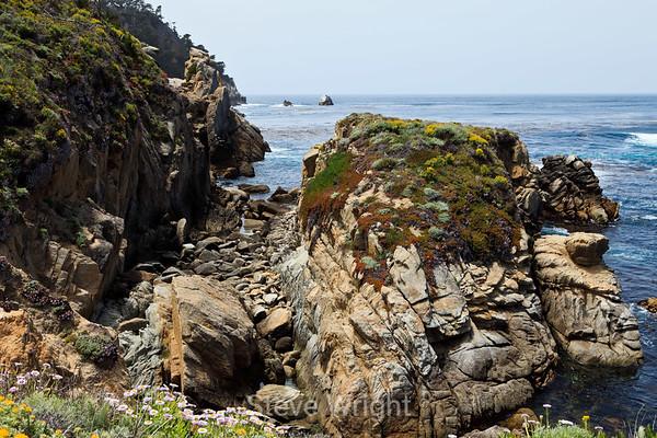 Point Lobos 6-28-2011