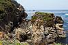 Bluefish Cove - Point Lobos #9209