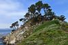 Big Dome cove - Point Lobos #9217