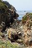 Bluefish Cove - Point Lobos #9208