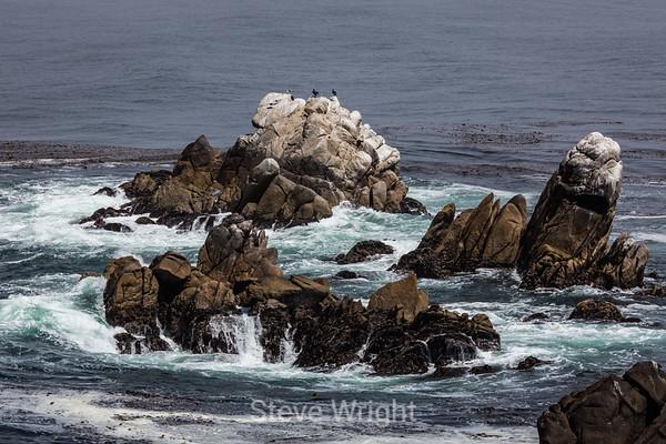 Point Lobos 7-21-2012