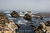 Bluefish Cove - Point Lobos #3823