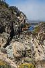 Bluefish Cove - Point Lobos #3810