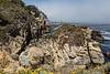 Bluefish Cove - Point Lobos #3815
