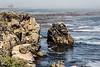 Bluefish Cove - Point Lobos #3798