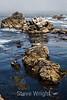 Bluefish Cove - Point Lobos #3797