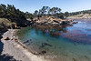 Cannery Point - Point Lobos #3742