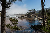 Cannery Point - Point Lobos #3885