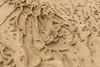 Sandstone Concretions - Point Lobos #4064