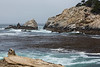 South Point - Point Lobos #4013-Edit
