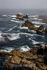 Bluefish Cove - Point Lobos #3856
