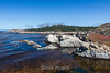 China Cove - Point Lobos #4852