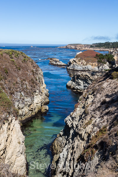 China Cove - Point Lobos #4815