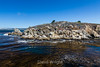 Granite Point - Point Lobos #4940