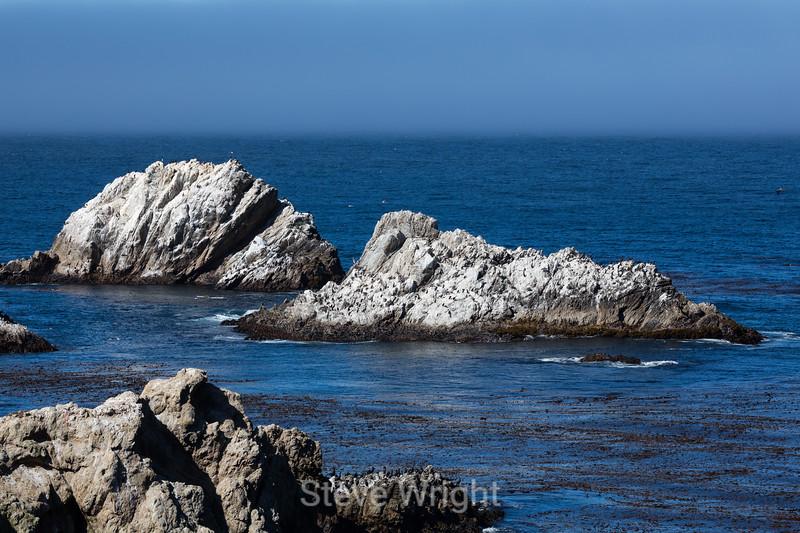 China Cove - Point Lobos #4777