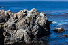 China Cove - Point Lobos #4741