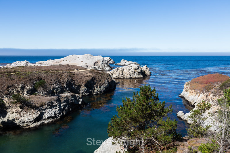 China Cove - Point Lobos #4795