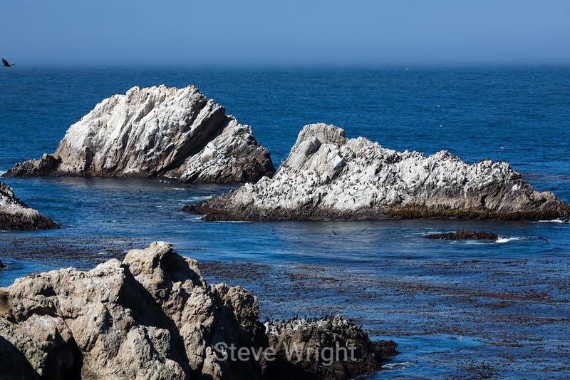 China Cove - Point Lobos #4775