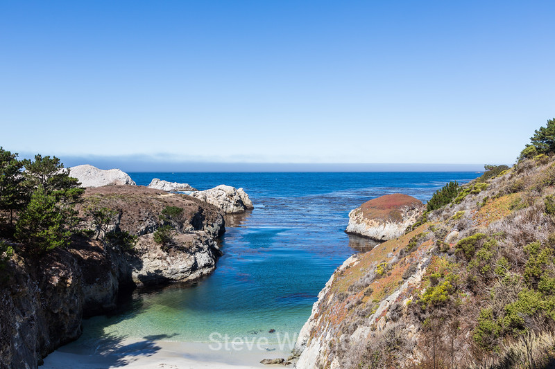 China Cove - Point Lobos #4806