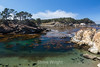 Coal Chute Cove - Point Lobos #5057
