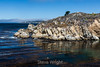 Granite Point - Point Lobos #4919