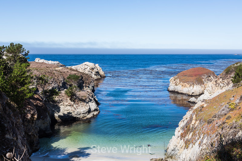 China Cove - Point Lobos #4807